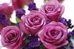 święto kwiatów