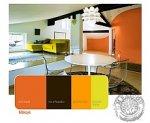 salon kolory Dekoral