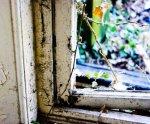 Uszczelnianie okien