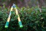 Ogrodowe narzędzia
