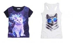 Koty w kosmosie