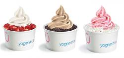 Dietetyczne desery Yogen Früz